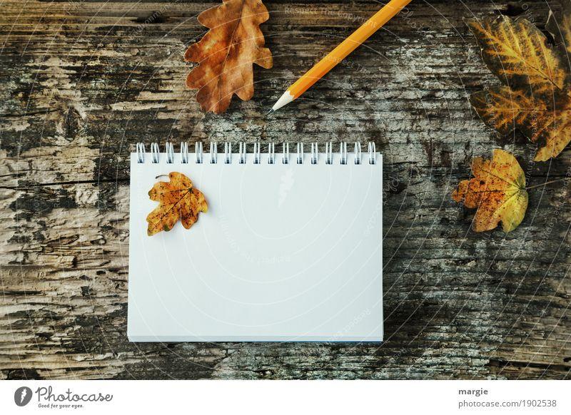 Herbstblätter lernen Beruf Büroarbeit Werbebranche Business sprechen schreiben gelb weiß Schreibstift Bleistift Schreibtisch Spirale Heft Schreibwaren