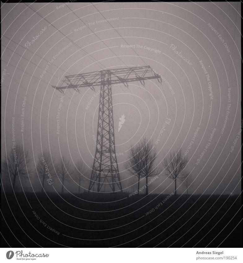 Silvestermorgen Technik & Technologie Energiewirtschaft Hochspannungsleitung Strommast Umwelt Natur Landschaft Winter Klima Wetter schlechtes Wetter Nebel Baum