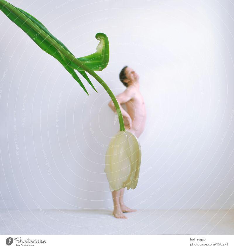 tanz bitte tanze tanze tanze mit mir rosemarie Mensch Mann weiß Blume Leben nackt feminin Frühling hell Tanzen Kunst Körper lustig Haut Erwachsene maskulin
