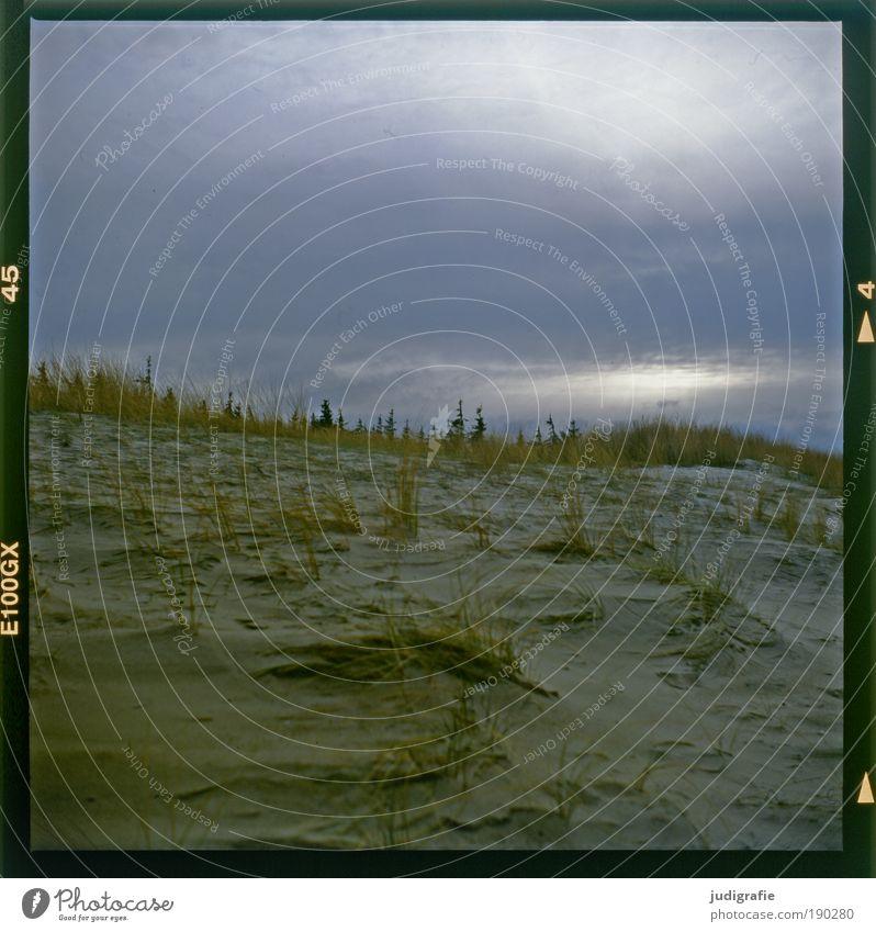 Abschied Himmel Natur Pflanze Einsamkeit Landschaft Strand Umwelt Traurigkeit Gras natürlich Küste Stimmung Sand Idylle Klima Wandel & Veränderung