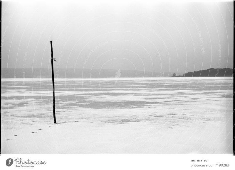 Wintergrau Sinnesorgane Erholung ruhig Angeln Winterurlaub wandern Natur Landschaft Wasser Horizont Klima Eis Frost Schnee Küste Seeufer Flussufer
