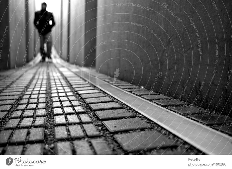 Fields Of Innocence schwarz Erwachsene Berlin Gefühle Bewegung Stein Traurigkeit Denken träumen Regen Beton maskulin Kultur 18-30 Jahre Frieden Denkmal