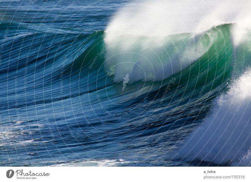 the wave Natur Ferien & Urlaub & Reisen blau schön grün Wasser Meer Bewegung Küste Kraft Wellen Wetter groß Geschwindigkeit Schönes Wetter gefährlich