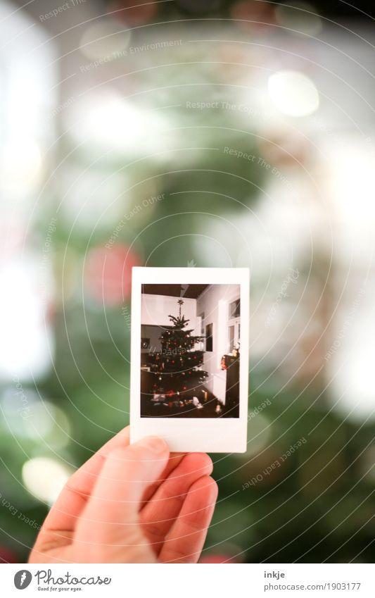 Weihnachtsbaum alt Weihnachten & Advent Hand Gefühle Stimmung Fotografie festhalten Vorfreude Erinnerung Nostalgie Bild-im-Bild