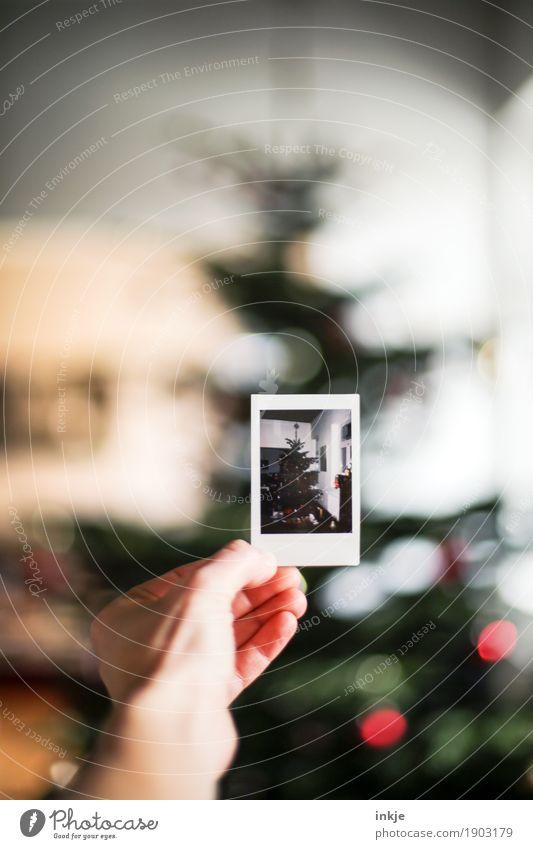 in memoriam Weihnachten & Advent Hand Polaroid Bild-im-Bild Weihnachtsbaum Weihnachtsdekoration festhalten Gefühle Stimmung Vorfreude Nostalgie Erinnerung