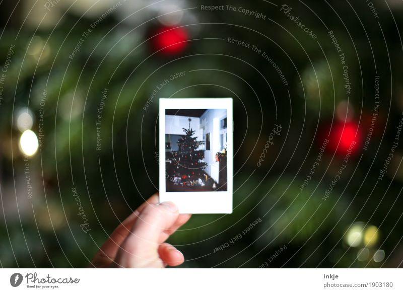 nur noch mal zur Erinnerung. Häusliches Leben Weihnachten & Advent Hand Weihnachtsbaum Polaroid Bild-im-Bild Fotografie festhalten Vorfreude Tradition zeigen