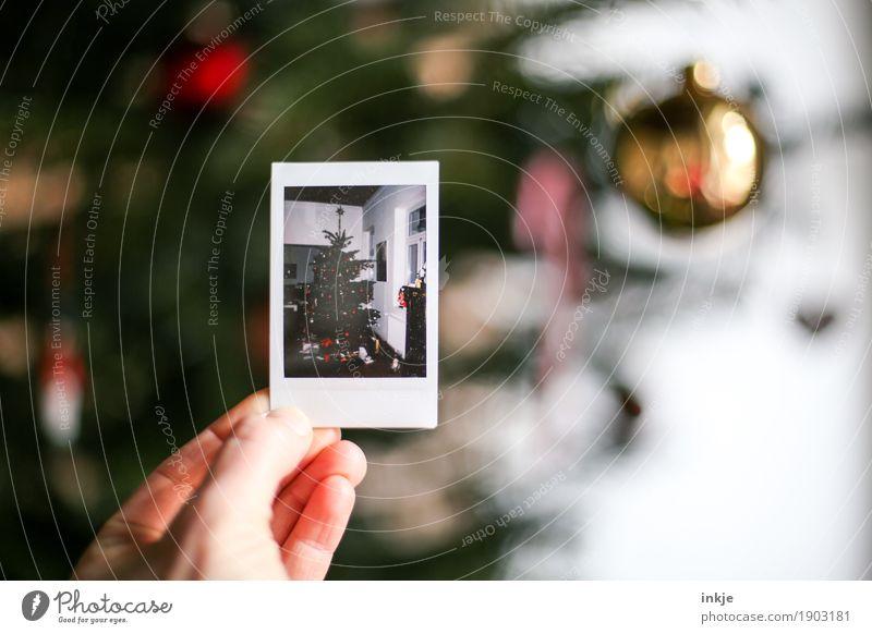 Damals. Zu Weihnachten. Lifestyle Häusliches Leben Weihnachten & Advent Hand Weihnachtsdekoration Weihnachtsbaum Polaroid Bild-im-Bild festhalten gleich