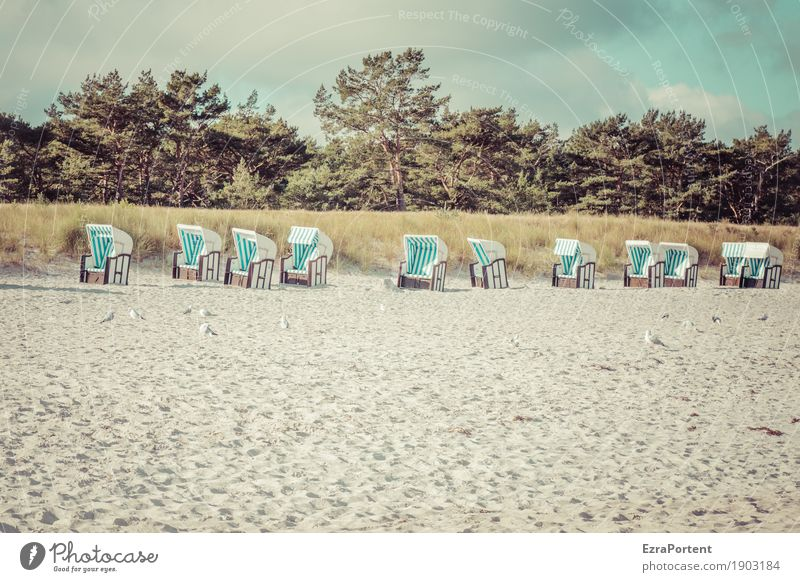 ........... Himmel Natur Ferien & Urlaub & Reisen blau Sommer weiß Baum Landschaft Erholung Wolken Strand Umwelt natürlich Gras Tourismus Sand