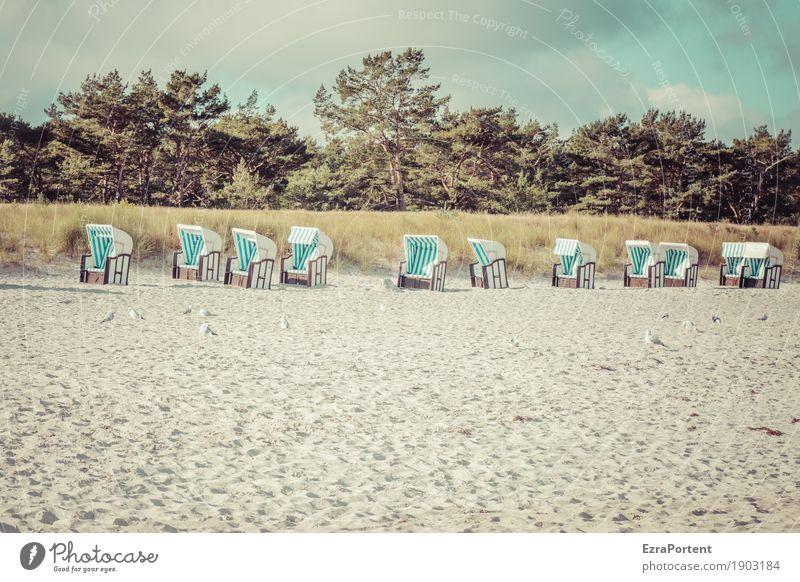 ........... Wellness Ferien & Urlaub & Reisen Tourismus Umwelt Natur Landschaft Himmel Wolken Sommer Klima Schönes Wetter Baum Gras Strand Ostsee natürlich blau
