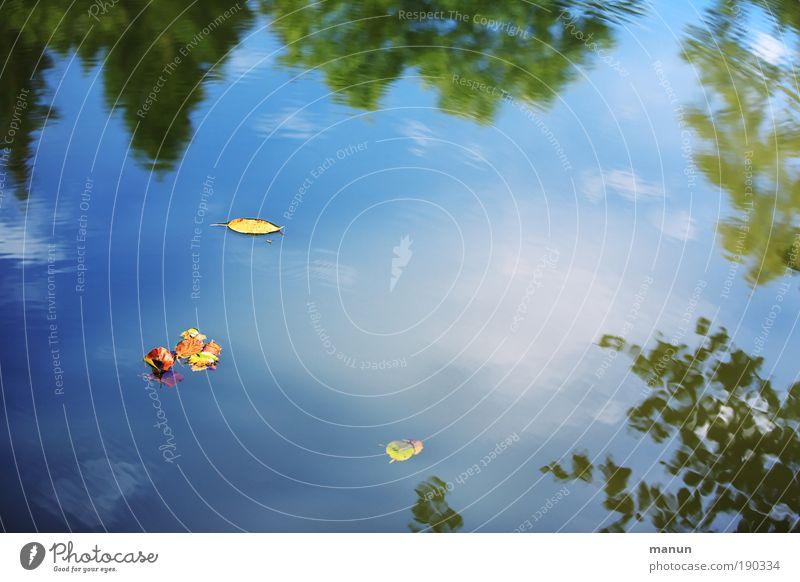 treiben lassen Natur Wasser Himmel Baum blau Sommer ruhig Blatt Einsamkeit Erholung Herbst Frühling träumen See Park Zufriedenheit