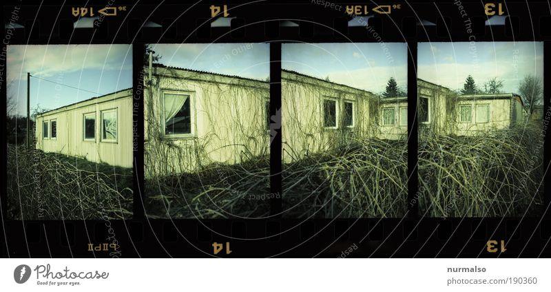 4in1 Box Winter Haus Fenster Umwelt Garten Gebäude Kunst verrückt außergewöhnlich Hoffnung Kabel Sträucher Häusliches Leben Telekommunikation einfach Lomografie