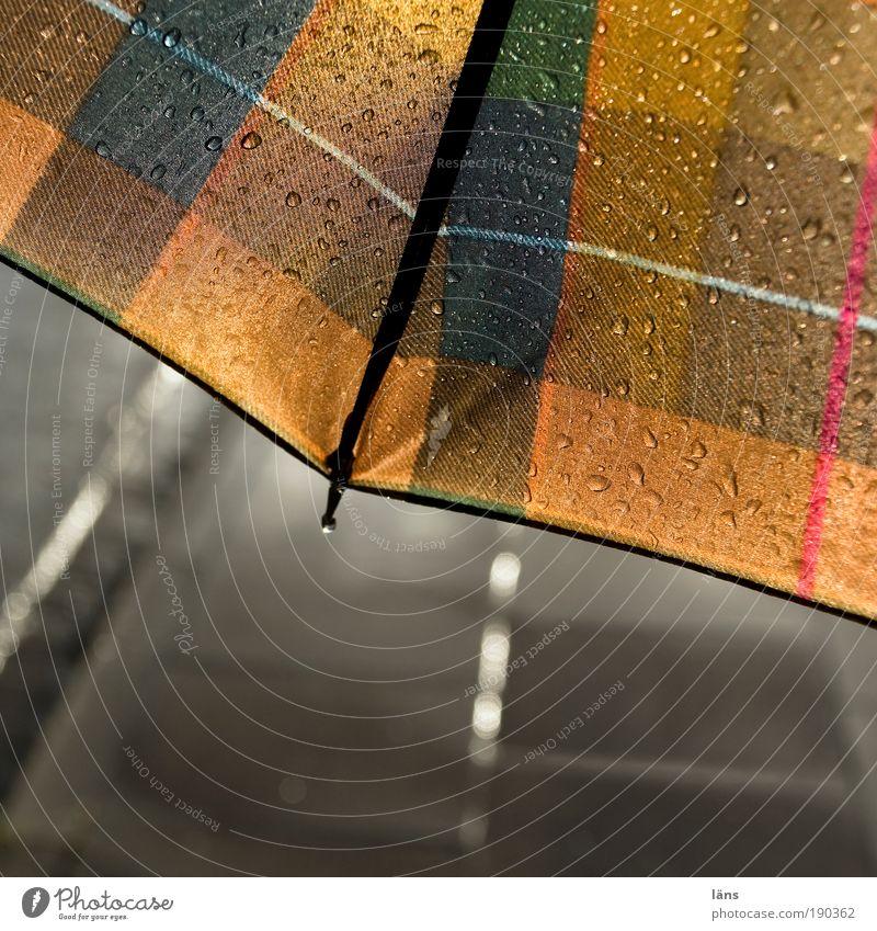 wetterverhältnis Straße Wege & Pfade Regen glänzend gehen Wassertropfen nass stehen Schutz Regenschirm Bürgersteig Verkehrswege feucht Fußweg Wetter kariert