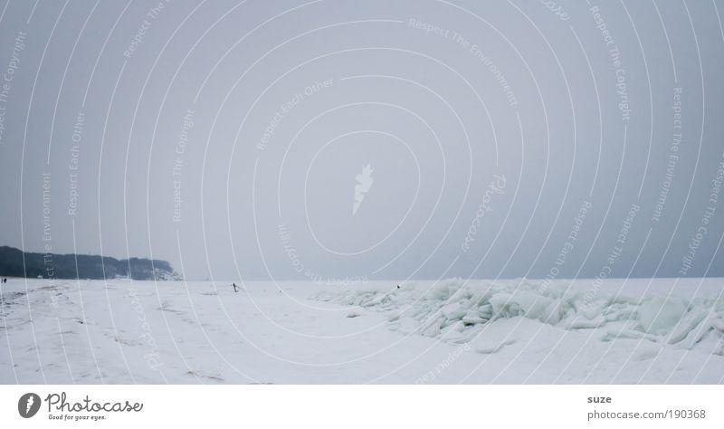 Küstennebel Meer Insel Schnee Umwelt Natur Landschaft Urelemente Luft Himmel Wolkenloser Himmel Horizont Winter Klima schlechtes Wetter Sturm Nebel Eis Frost