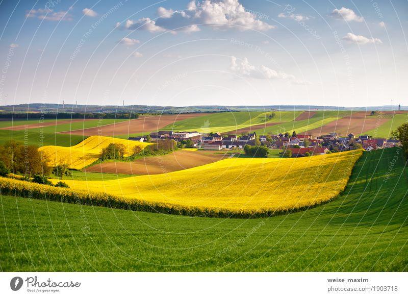 Frühlingsgrün und gelbe Rapsfelder Österreichs. Dorf auf Hügeln. Himmel Natur Ferien & Urlaub & Reisen Pflanze Sommer Blume Landschaft Wolken Haus Ferne Umwelt