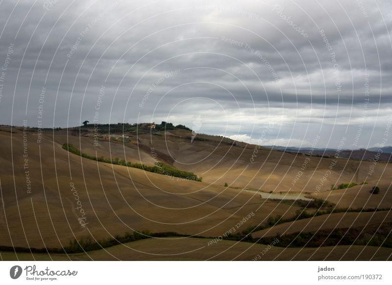 hügel Wolken ruhig gelb Erholung Landschaft Berge u. Gebirge Wege & Pfade Wärme braun Feld Tourismus Hügel Geborgenheit Sinnesorgane Toskana Italien