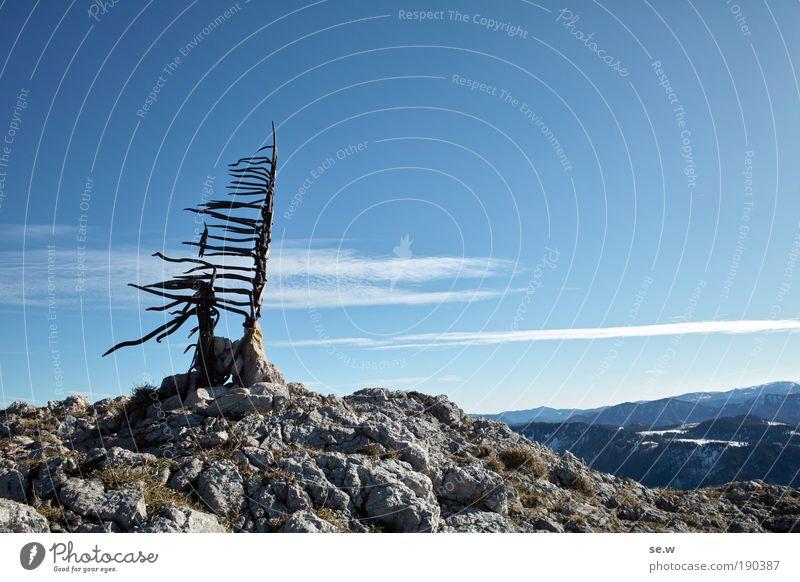 Über allen Gipfeln Natur blau Baum Erholung Einsamkeit ruhig Freude Berge u. Gebirge Herbst grau Freiheit Vogel Horizont Zufriedenheit Freizeit & Hobby Tourismus