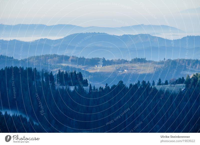 Muldenlage 7 Himmel Natur Ferien & Urlaub & Reisen Pflanze Baum Landschaft Einsamkeit Winter dunkel Wald Berge u. Gebirge Umwelt kalt natürlich Tourismus Nebel