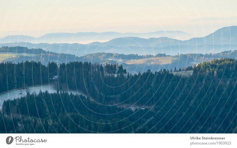 Muldenlage 9 Ferien & Urlaub & Reisen Tourismus Winter Winterurlaub Berge u. Gebirge wandern Umwelt Natur Landschaft Pflanze Himmel Horizont Nebel Eis Frost
