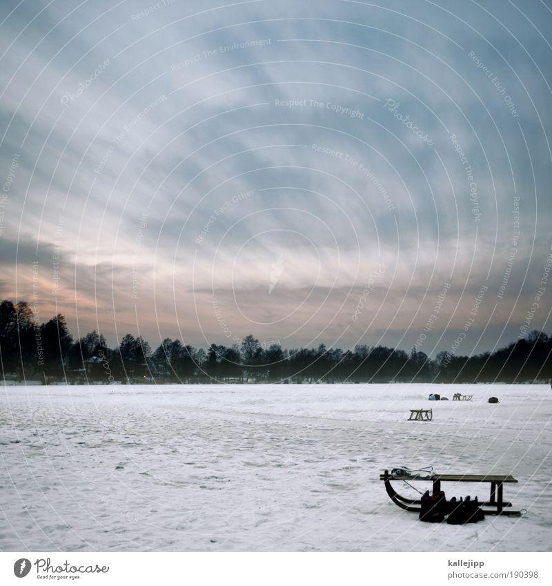 rutschpartie Freizeit & Hobby Spielen Umwelt Natur Wolken Sonnenaufgang Sonnenuntergang Winter Klima Wind Eis Frost Schnee Seeufer Teich Tourismus Schlitten