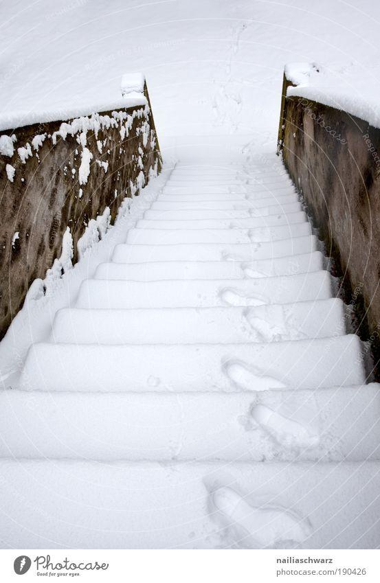 Schneetreppe Natur alt weiß Winter kalt Umwelt Architektur Wege & Pfade Park Wetter braun Treppe Klima Sauberkeit Bauwerk