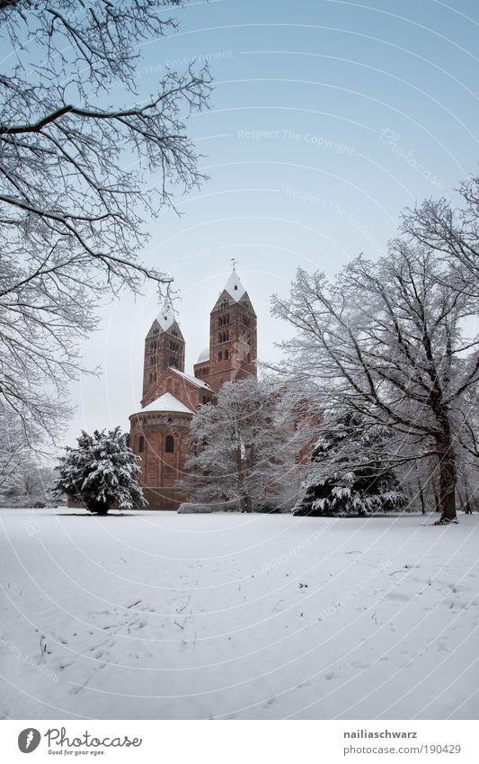 Winterdom Natur alt Schnee Umwelt Landschaft Architektur Stein Park Deutschland Eis Platz ästhetisch Kirche Europa