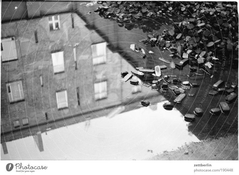 Kohle brikett Pfütze Wasser Wasseroberfläche Reflexion & Spiegelung Reflektor nachdenklich Denken Haus Fassade Fenster Heizperiode Winter Brennstoff nass Herbst