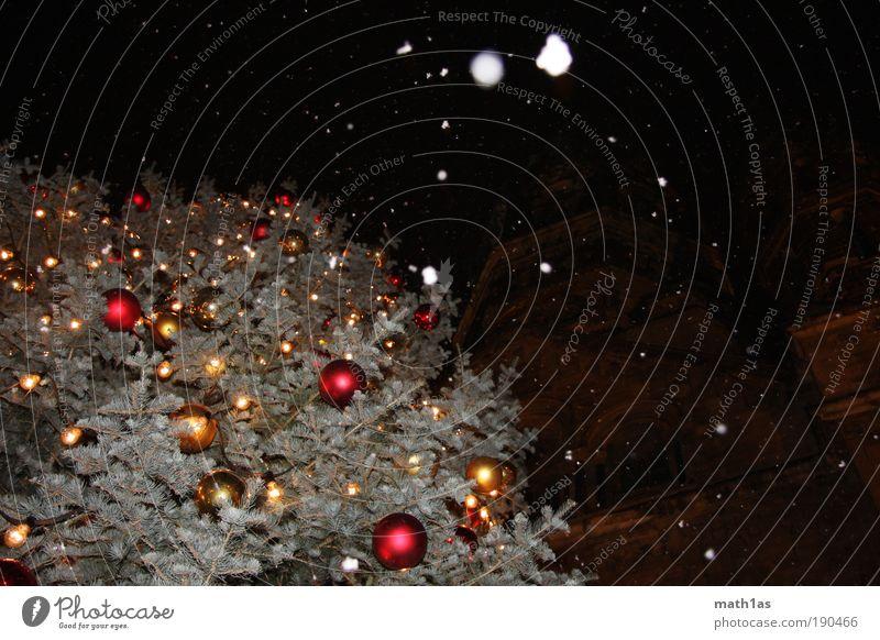 Noch 10 Monate und 23 Tage... Baum Weihnachten & Advent Schneefall Stimmung Kirche Weihnachtsbaum Christbaumkugel Dom stagnierend Schneeflocke Pflanze