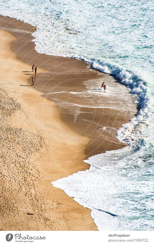 Das Meer flieht vor den Menschen Natur Ferien & Urlaub & Reisen Pflanze Meer Landschaft Tier Freude Ferne Strand Umwelt Herbst Sport Küste Freiheit Schwimmen & Baden Tourismus