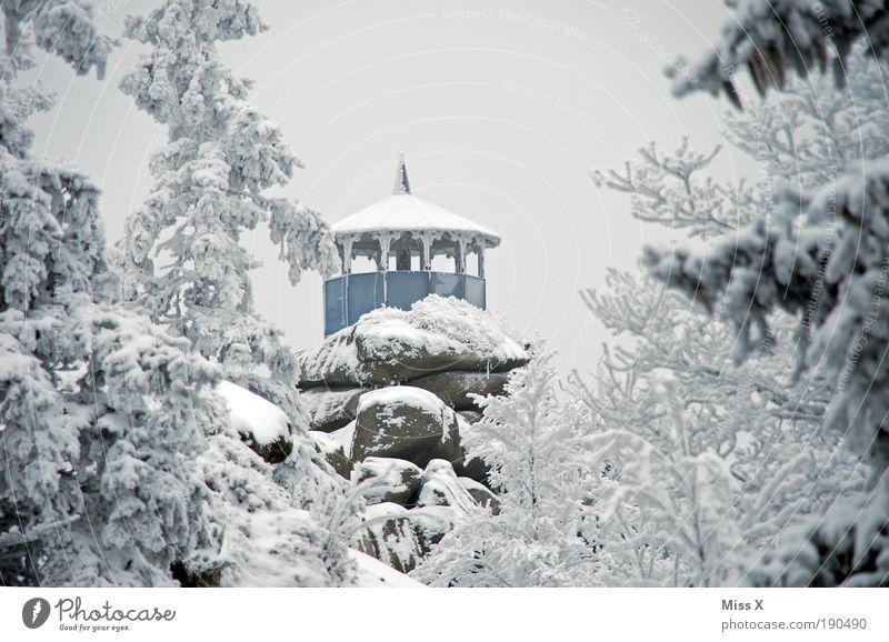 Schüssel / Märchenwald Natur Baum Winter Ferien & Urlaub & Reisen Haus Wald kalt Schnee Berge u. Gebirge Schneefall Eis Nebel Wetter Umwelt groß