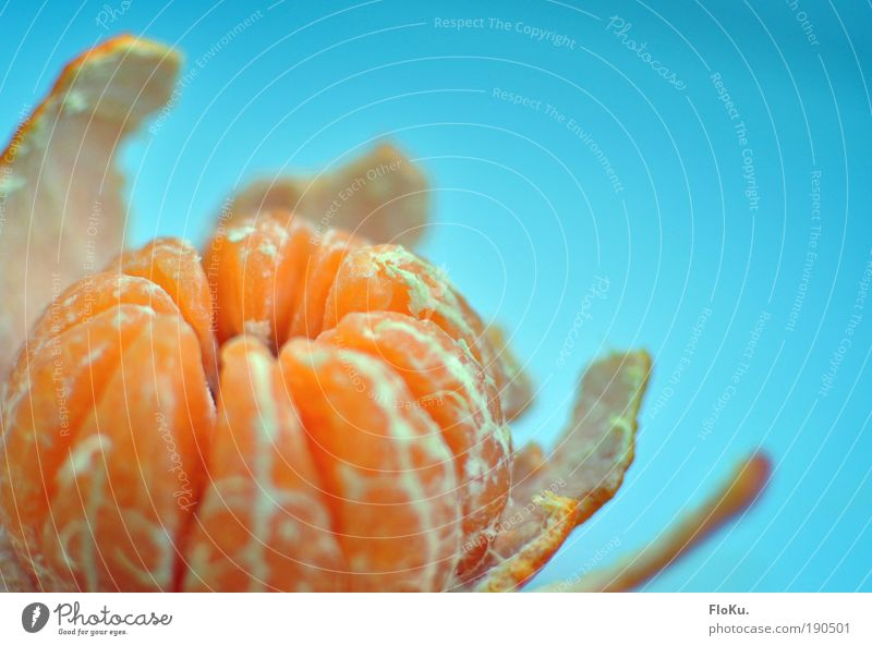 Mandarine blau Gesundheit orange Frucht Orange Lebensmittel Ernährung Gesunde Ernährung Bioprodukte Hülle Vegetarische Ernährung Vitamin häuten Zitrusfrüchte Mandarine Südfrüchte