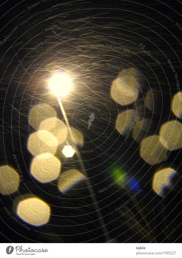 Gestöber Energiewirtschaft Natur Nachthimmel Winter Klima Wetter Sturm Eis Frost Schneefall fallen bedrohlich dunkel glänzend hell kalt gold schwarz Heimweh