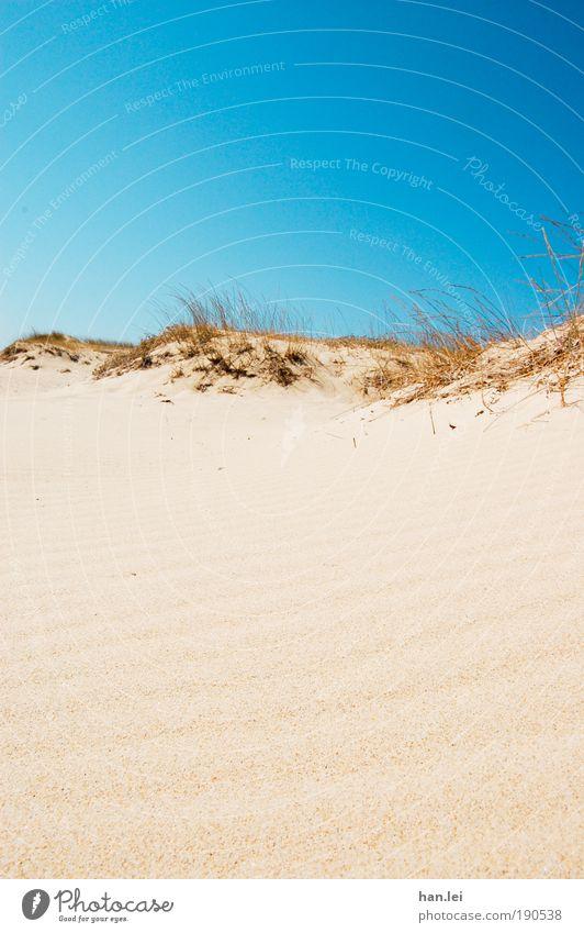 simple beach Sonne blau Sommer Freude Strand Ferien & Urlaub & Reisen Erholung Wärme Sand braun Horizont einfach Wüste heiß Stranddüne Düne