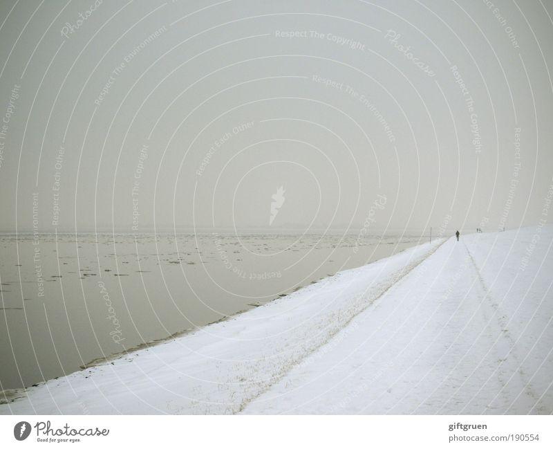 winter am meer Mensch Natur Wasser Himmel Meer Winter Strand ruhig dunkel kalt Schnee Landschaft Eis Küste gehen Umwelt