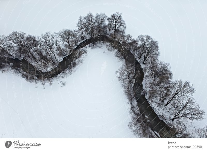 Umweltbilanz Natur Wasser Baum Winter ruhig Luftaufnahme Landschaft kalt Schnee oben Freiheit Erde Vogelperspektive hoch trist