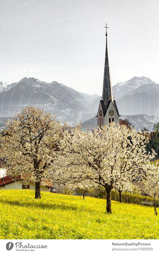 church in fraxern Ferien & Urlaub & Reisen Sommer Natur Landschaft Frühling Hügel Alpen Berge u. Gebirge Tower (Luftfahrt) Bundesland Vorarlberg Österreich