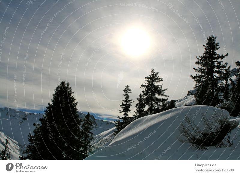 Bergzauber Natur schön weiß Baum Sonne blau Freude Winter Ferien & Urlaub & Reisen schwarz gelb kalt Schnee Berge u. Gebirge Freiheit grau
