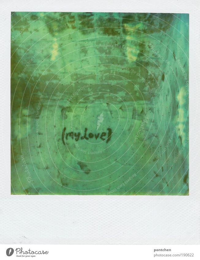 Polaroid zeigt Raum. Putz bröckelt von den Wänden. An einer Wand steht Max Love. Romantik, Verfall. Lost place Jugendkultur Subkultur Haus Ruine Bauwerk Gebäude