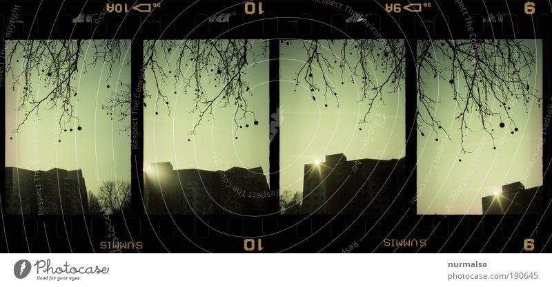 4in1 Wohnbox Baum Winter Haus dunkel Umwelt träumen Kunst glänzend Fassade hoch modern Hochhaus Klima Lomografie Ast Skyline