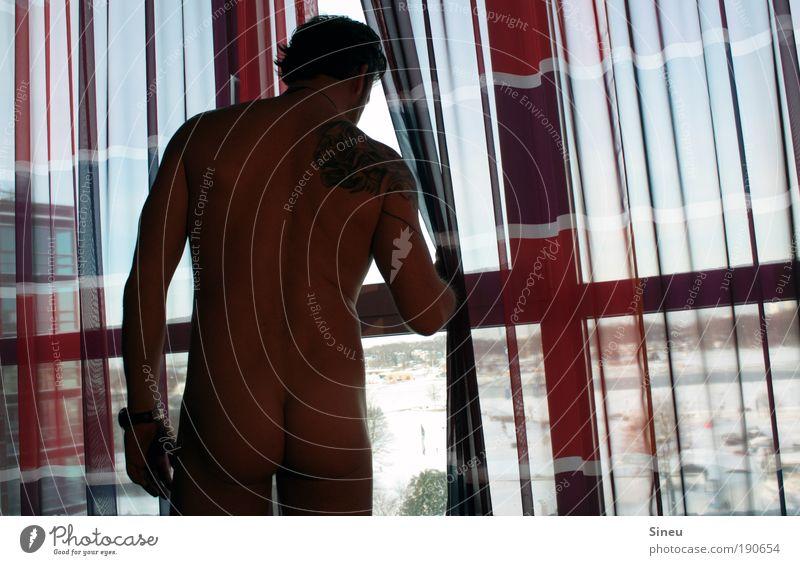 Schöne Aussichten Mensch maskulin Mann Erwachsene Haut Rücken Gesäß 1 Fenster Tattoo beobachten berühren Denken Erholung stehen Erotik Gesundheit muskulös nackt