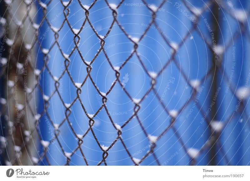 <><><><> Winter Schnee blau Maschendrahtzaun hängenbleiben Haufen Draht Drahtzaun kalt verfangen gefangen eingesperrt Gitter Schutz eingezäunt Farbfoto