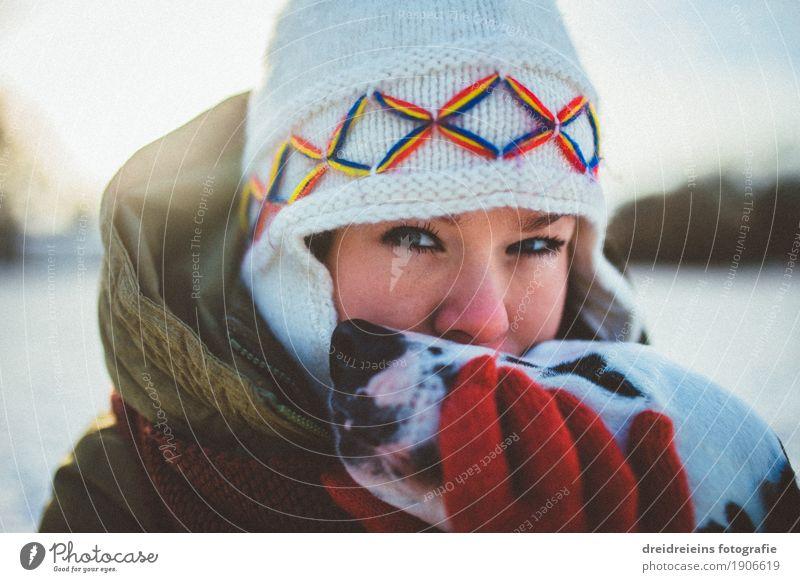 Bedingungslose Liebe. Frau Hund Tier Winter Erwachsene Gefühle Lifestyle feminin Glück Zusammensein Freundschaft Kommunizieren Lebensfreude Schönes Wetter