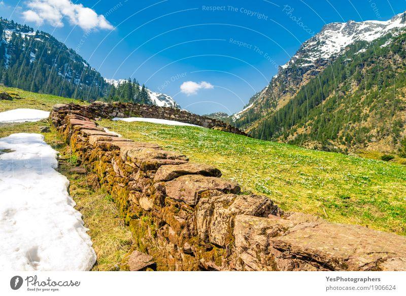 Vorfrühling in den Schweizer Alpen Erholung Ferien & Urlaub & Reisen Tourismus Ausflug Freiheit Sonne Winter Schnee Winterurlaub Berge u. Gebirge wandern Natur