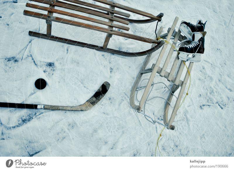 freizeitangebot Lifestyle Freude Freizeit & Hobby Spielen Winter Schnee Winterurlaub Sport Wintersport Sportstätten Wasser Eis Frost Teich See fahren kalt