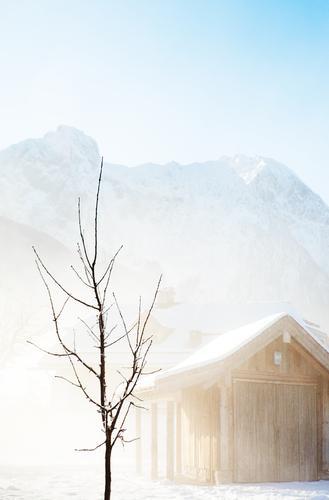 Irgendwann... Natur Himmel weiß Baum blau Winter Ferien & Urlaub & Reisen ruhig kalt Schnee Berge u. Gebirge Landschaft Eis hell Umwelt Frost