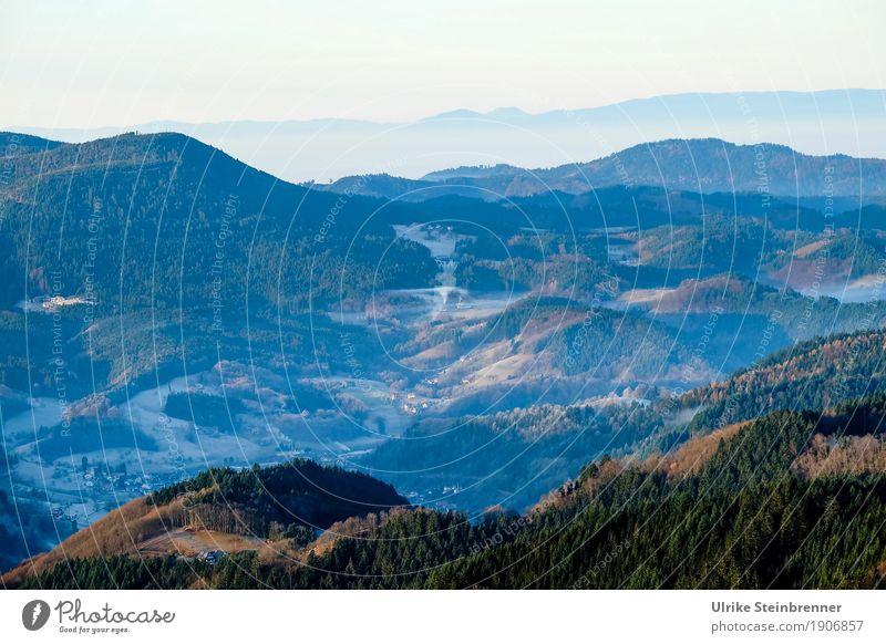 Höhenlage 6 Natur Ferien & Urlaub & Reisen Pflanze Landschaft Baum Erholung Einsamkeit Ferne Winter Wald Berge u. Gebirge dunkel Umwelt kalt natürlich Tourismus