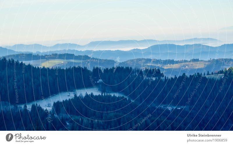 Muldenlage 8 Himmel Natur Ferien & Urlaub & Reisen Pflanze Baum Landschaft Erholung Einsamkeit Winter dunkel Wald Berge u. Gebirge Umwelt kalt natürlich