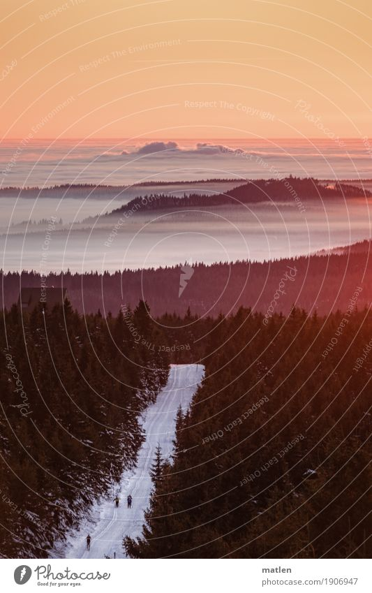 der lange Marsch Mensch 3 Umwelt Natur Landschaft Pflanze Himmel Wolken Horizont Sonnenaufgang Sonnenuntergang Winter Wetter Schönes Wetter Nebel Eis Frost