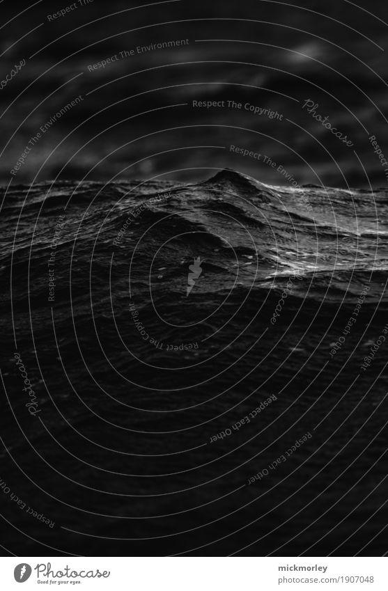 Dunkles Gewässer Ausflug Abenteuer Ferne Freiheit Segeln Umwelt Wasser Wetter schlechtes Wetter Unwetter Sturm Regen Wellen Küste Seeufer Flussufer Bewegung