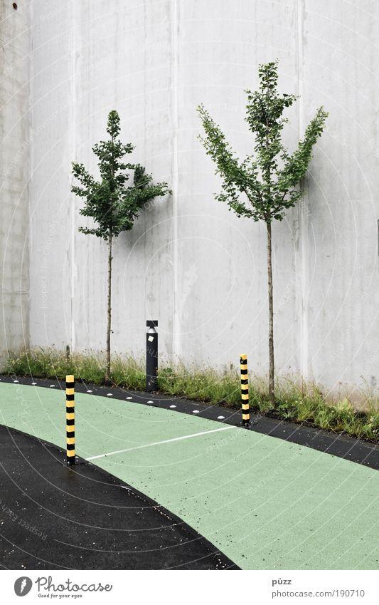 Rennbahn Baum Menschenleer Mauer Wand Beton Schilder & Markierungen Hinweisschild Warnschild ästhetisch grau grün Odysseum Laufbahn Warnsignal Farbfoto