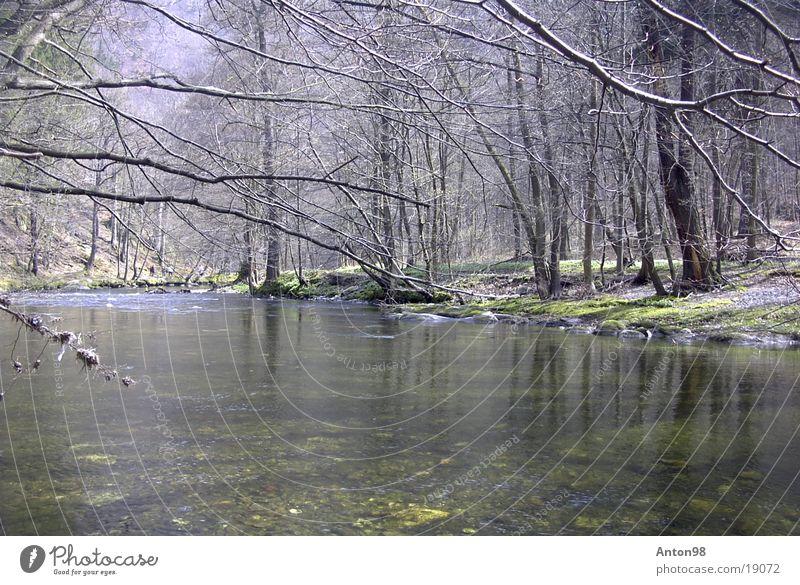 Schwarzatal Wasser Fluss Tal